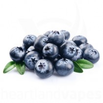 Blueberry (100ml plastic)