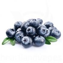 Blueberry (100ml plastic)
