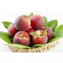 White Peach (FA)
