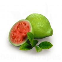 Guava (FA)