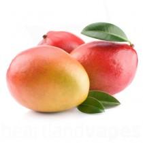 Mango (TFA)