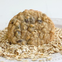 Oatmeal Cookie (TFA)