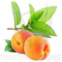 Peach Menthol (HV)