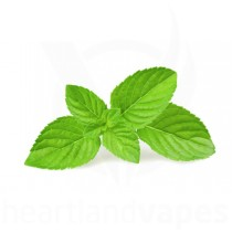 Spearmint Flavoring Concentrate (TFA) by The Flavor Apprentice