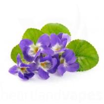 Violet Candy (TFA)