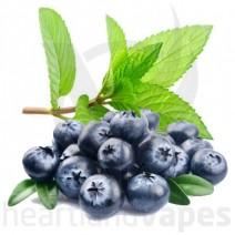 Blueberry Menthol (HV)
