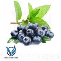 Blueberry Menthol (30ml plastic)