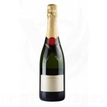 Champagne (PG) (TFA)