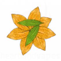 Tobacco (7 Leaves) (FA)