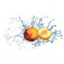 Peach (Juicy) (TFA)