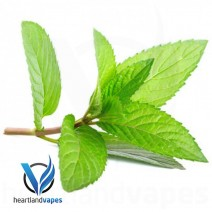 Menthol Liquid (PG) Flavoring Concentrate (HV) by Heartland Vapes