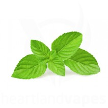 Spearmint eLiquid