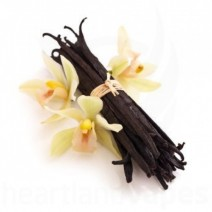 Vanilla (HS) Flavoring for DIY e-Liquid