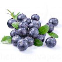 Blueberry (Clear) (LA)